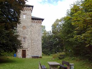 Spaziergang zur Burgruine Aremberg